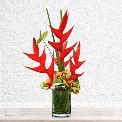 Effort | Buy Flowers in Dubai UAE | Gifts