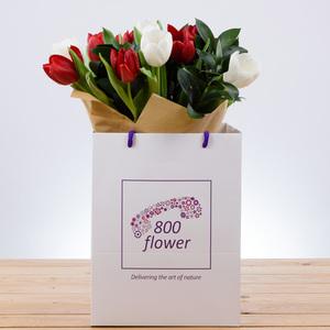 Start Fresh Tulips | Buy Flowers in Dubai UAE | Gifts