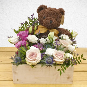 Teddy in a Forest | Buy Flowers in Dubai UAE | Gifts