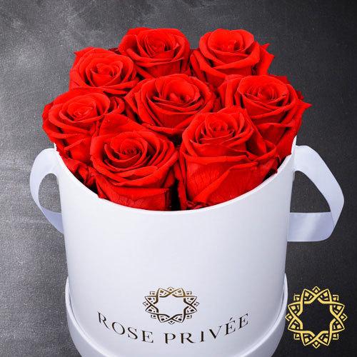 Rose Privee White Box, Red Roses| Buy Flowers in Dubai UAE | Gifts
