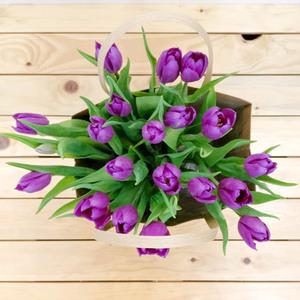 Purple Garden Tulips   Buy Flowers in Dubai UAE   Gifts