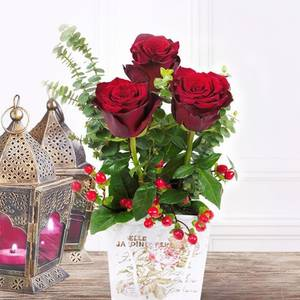 3 Stems in a Garden | Buy Flowers in Dubai UAE | Gifts