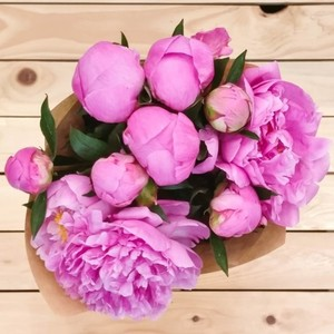 Eternity Peony | Buy Flowers in Dubai UAE | Gifts