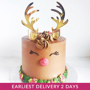 Christmas Celebration Cake | Buy Cakes in Dubai UAE | Gifts