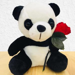 Panda Bear with Preserved Rose | Buy Gifts in Dubai UAE | Gifts