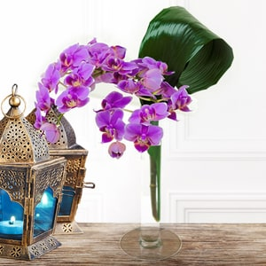 Purple Waterfall | Buy Flowers in Dubai UAE | Gifts